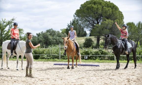 Perfectionnement équitation