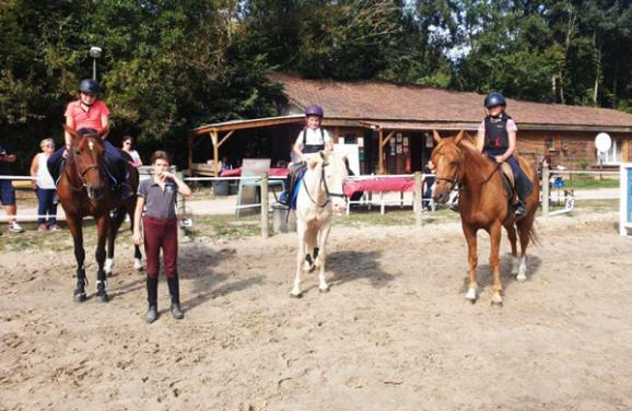 cours chevaux