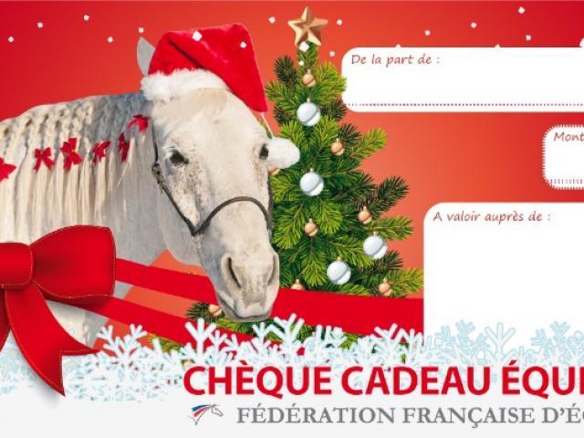 NOUVEAU Offrez de l'équitation à noël, offrez un chèque cadeau !